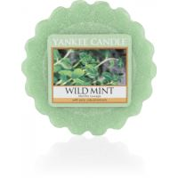 Yankee Candle Vonný vosk Wild mint 22g