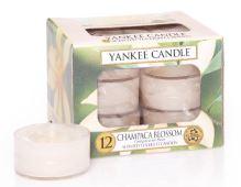 Yankee Candles čajové svíčky 12 x 9,8g Champaca Blossom